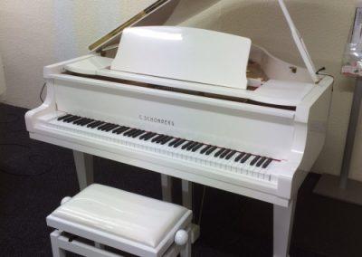 White C Schonberg Grand